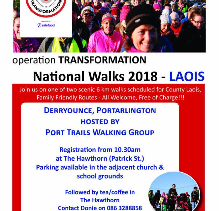 Operation Transformation Walk 2018, Derryounce