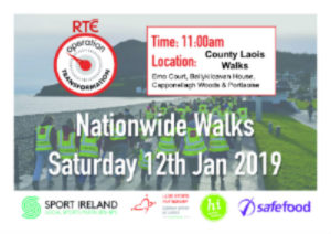 Operation Transformation Walk Capponellagh Woods, Durrow 5k & 8k @ The Square